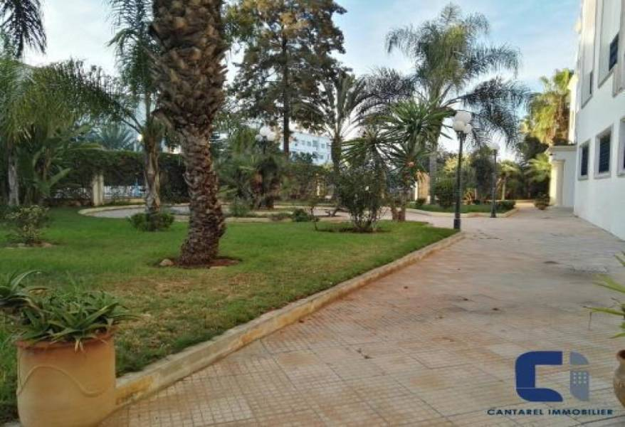 Appartement en Location à casablanca 30.000 DH