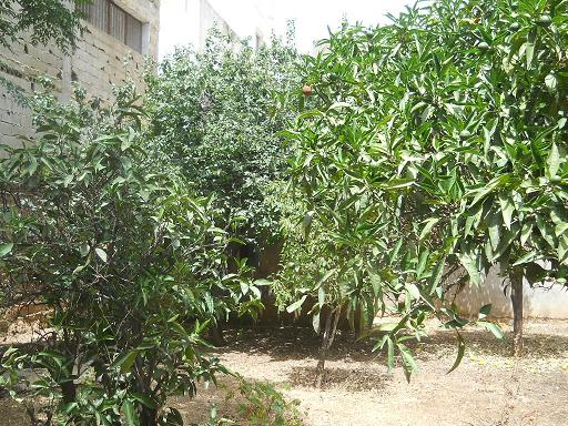 Villa-House for Rental in fes 4.000 DH
