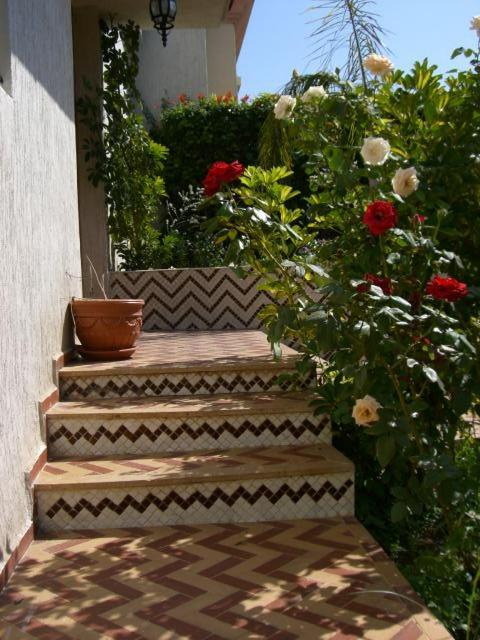 House for Rental in rabat 15.000 DH